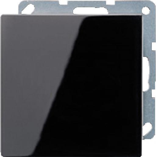 Jung LS990 blindplaat centraalplaat zwart